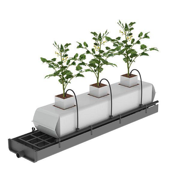 sistemas de cultivo hidropnico que permiten el control y de los drenajes y riego ayudan a prevenir las eliminan los lixiviados